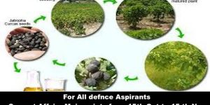 For All Defence Aspirants from 30 October & 15 November issues