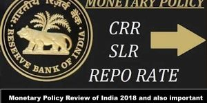 Monetary Policy Review of India 2018 and also important terms of Economics